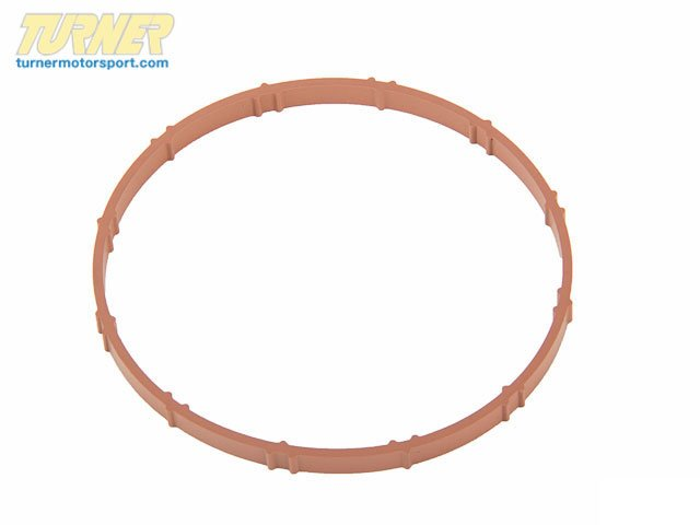 T#19252 - 11617528341 - Genuine BMW Profile Gasket 11617528341 - Genuine BMW -