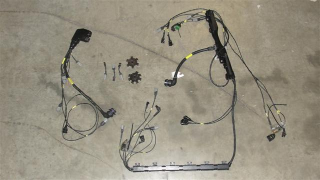 RR_E03a_lg tms2429 motec m 600 n52 engine wiring harness (used) turner used wiring harness at reclaimingppi.co