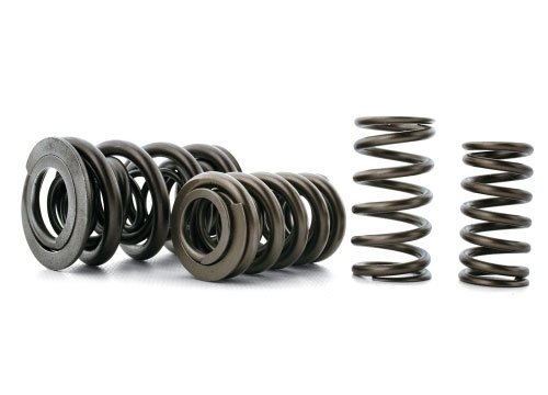 T#439 - S10049-24 - E36 325, 328 & M3 Ferrea High Performance Valve Spring Set - Ferrea - BMW